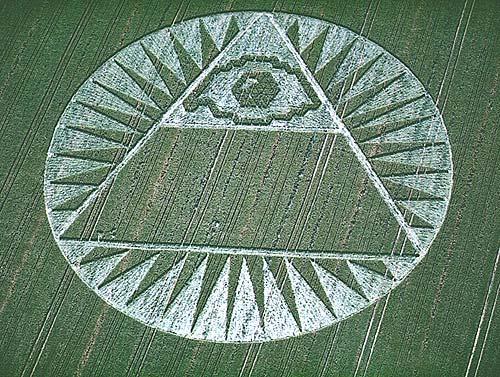 [تصویر: corn589.jpg]